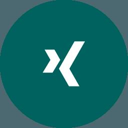 Icon von Xing
